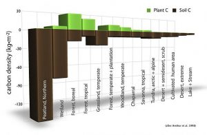 Carbon Density soil
