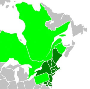 RGGI regulated states (dark green) and observers.  Source: By The original uploader was Cg-realms at English Wikipedia [GFDL or CC-BY-SA-3.0], via Wikimedia Commons